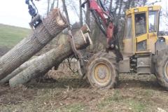 Holzarbeiten Schmidtgartenbau
