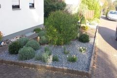 Vordergarten Beispiel
